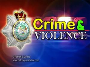 Crime & Violence Report